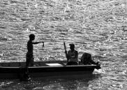 Photo: Rafael Guedes/Marine Photobank