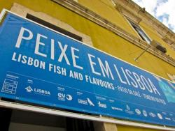 mcith_Peixe-em-Lisboa