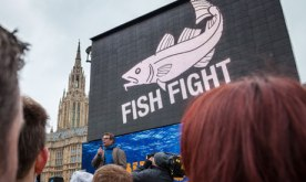 Sustainable Seafood Coalition (SSC) and sustainable fish labelling : Fish Fight march