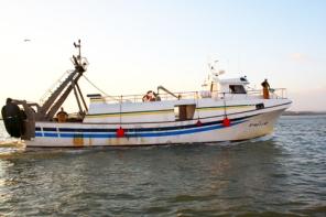 Pescas2
