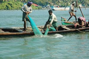 clam-fishery-india