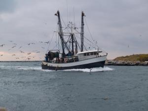 jrc-fisheries-fishing-trawler