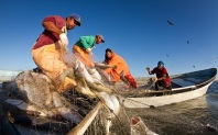 small_scale_fisheries_378x235_1