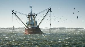 Pelagic%20fishing%20vessel%20(Netherlands)%20©%20Eric%20Gevaert%20_%20Dreamstime_com_