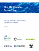 Blue Manifesto_125x0