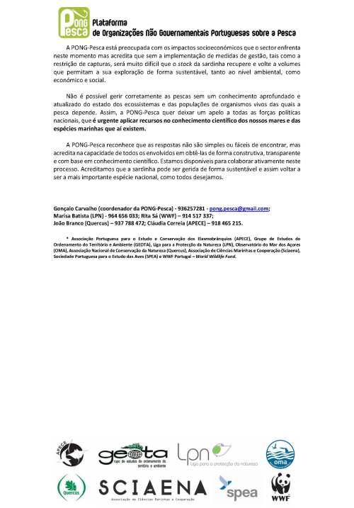 CI_Sardinha_Alargado_PONG-Pesca_Page_3