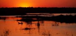 mahavavy-kinkony-wetland-complex