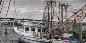 barco-de-pesca-610x310