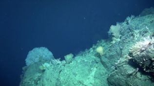 _95281591_seamount-cliff