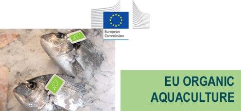 e20170627_pongpesca_aquaculture 86a8fe0e-b88e-4bf2-abaf-782368f86eb3