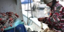 pesca-mar-fisherman-449280_960_720-660x330