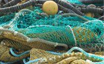 rede-pesca-925x578