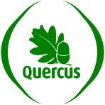 Logo_Quercus