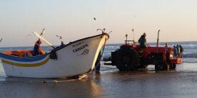 pesca-boat-966937_960_720-660x330