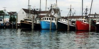 pesca-fishing-539592_960_720-660x330