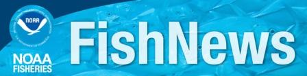 noaa-fishnews_crop