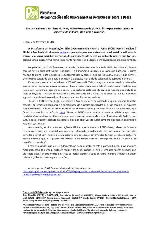 CI_PONG-Pesca_MedidasTécnicas-page-001